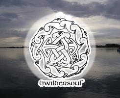 wildersoul circle1