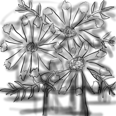 20170308-04-CC Cut Flowers