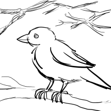 Sparrow with sketchy tree branches