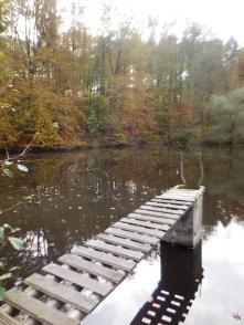 In diesem See auch!