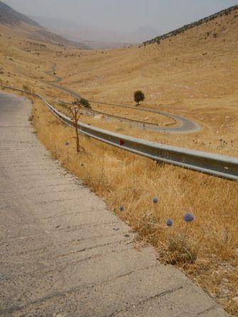 Straße nach Dukan