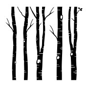 Birch Trees and Leaves Vinyl Wall Decal