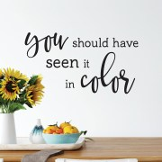 You Should Have Seen it in Color Vinyl Wall Decal