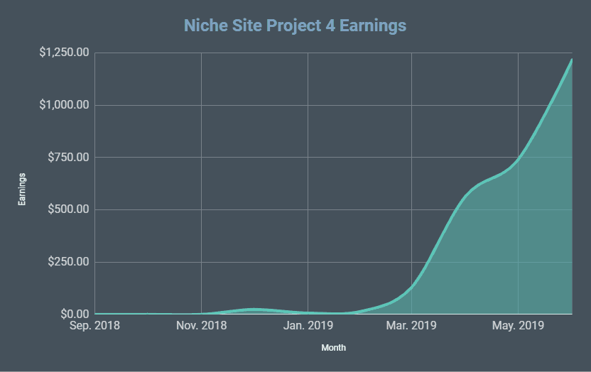 Niche Site Project 4 Revealed! June 2019 Monthly Income Report