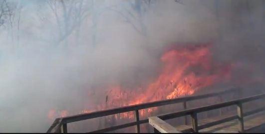 Indiana Dunes National Lakeshore wildfire