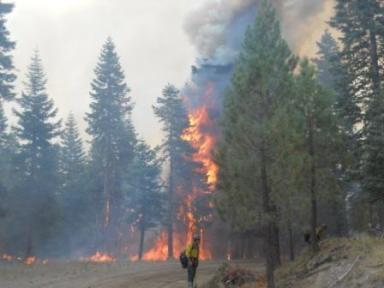 Former USFS Forest Supervisor blasts NPS for management of Reading Fire