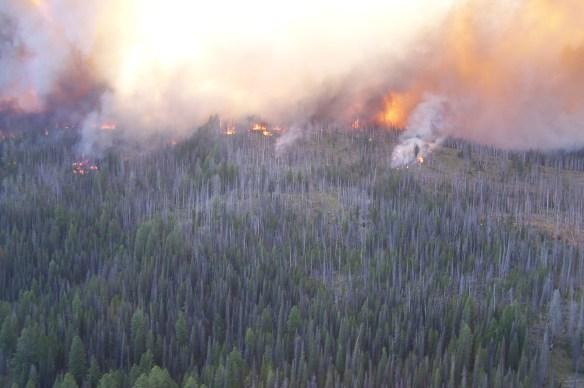 Halstead Fire in Idaho