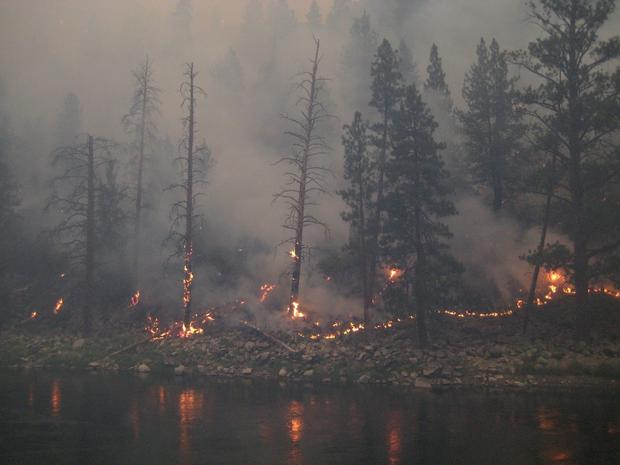 Mustang Fire along the Salmon River