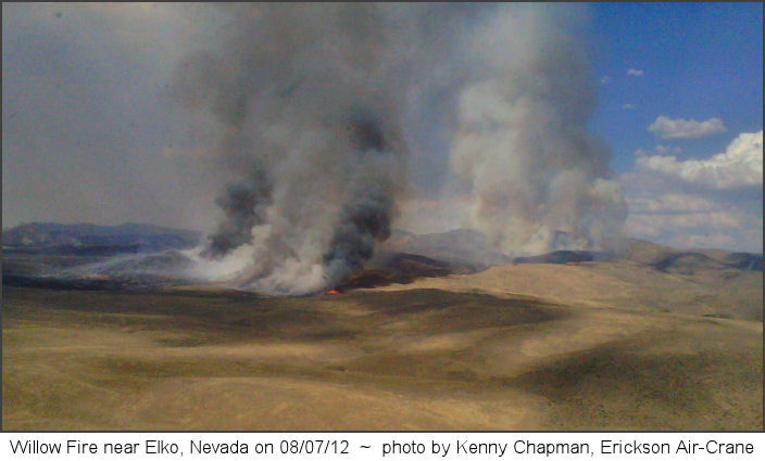 Willow Fire 08/07/12