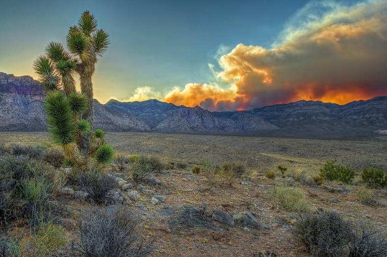 Carpenter 1 Fire as seeb from Red Rock National Conservation Area. DOI photo.