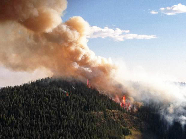 Druid Fire August 16, 2013. Photo by Yellowstone National Park.