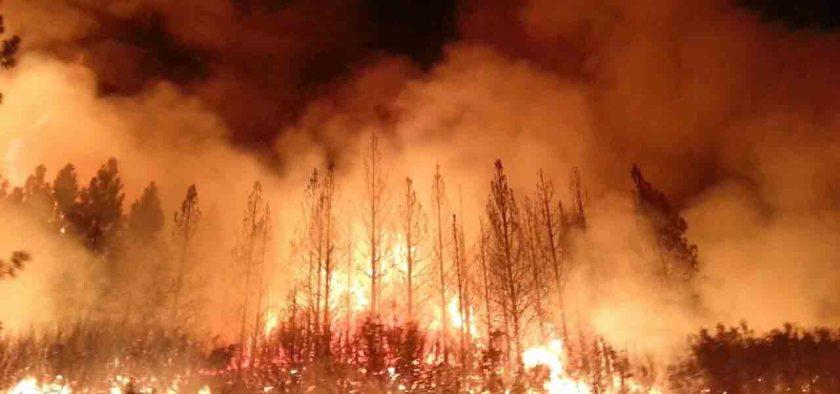 Rim Fire. InciWeb photo.