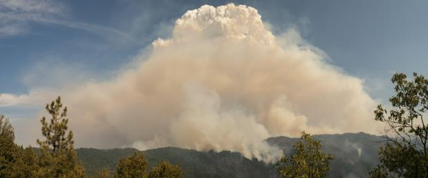 Pyrocumulus cloud over the Happy Camp Complex of fires, August 28, 2014