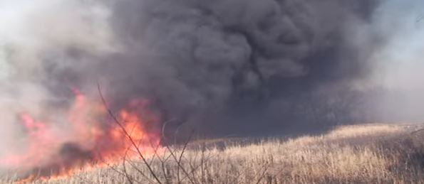 fire in Indiana Dunes National Lakeshore