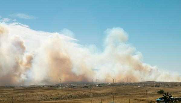 Cole Creek Fire