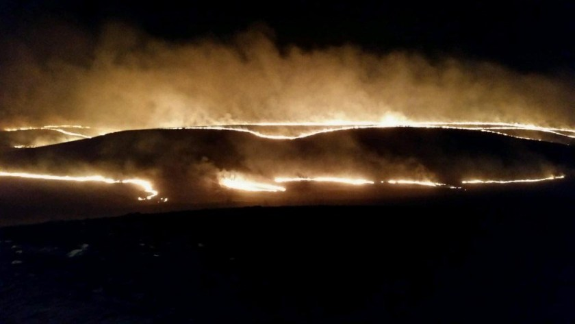 prescribed fire Tall Grass Prairie