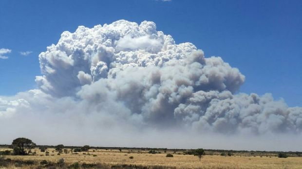 Bushfire Madura, Western Australia