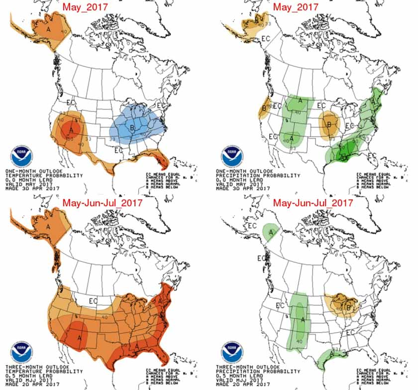 Precipitation Temperature outlook map