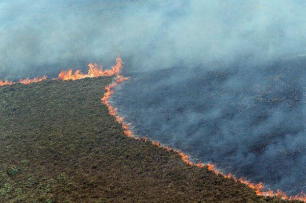 Chatham Islands Fire