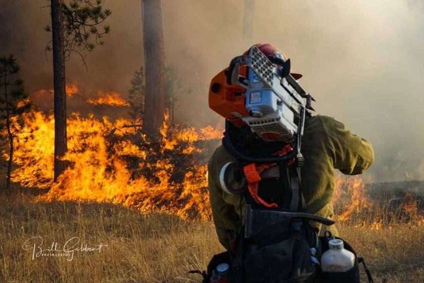 Legion Lake Fire South Dakota custer state park