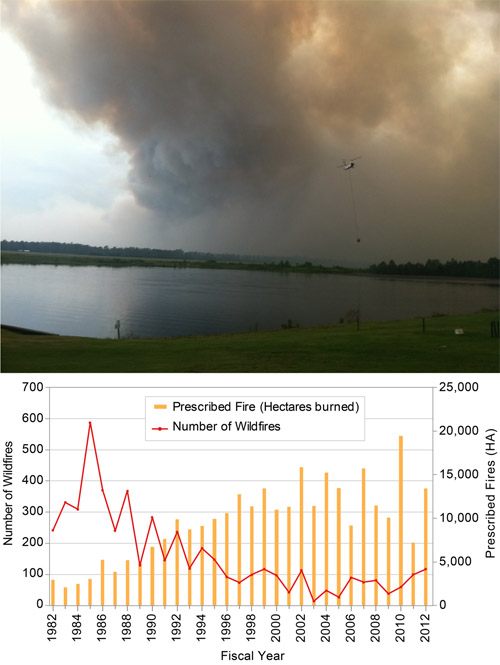 Fort Benning prescribed fire