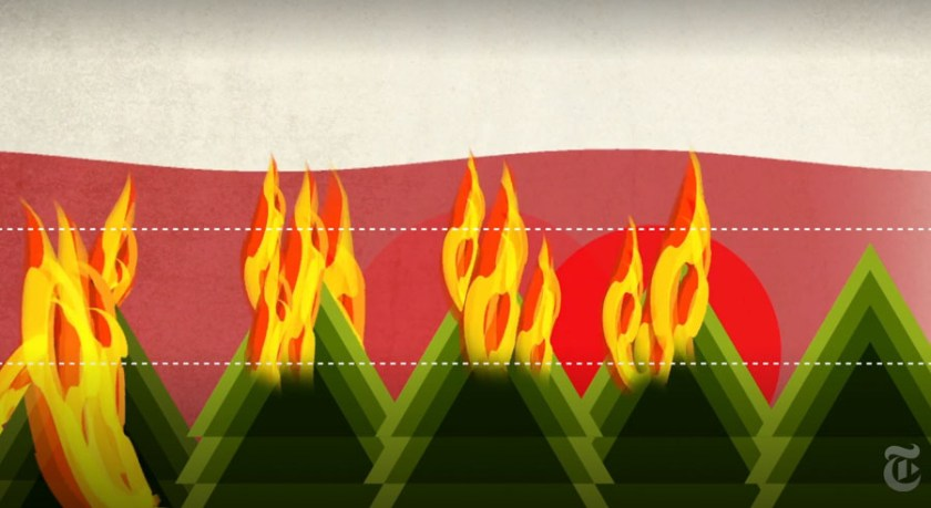 how wildfires burn