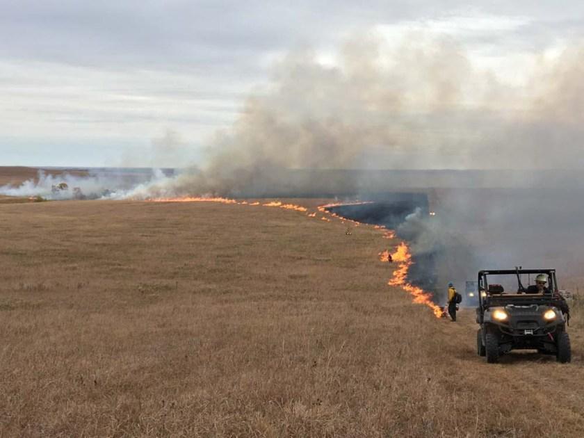 Prescribed fire at Tallgrass Prairie National Preserve