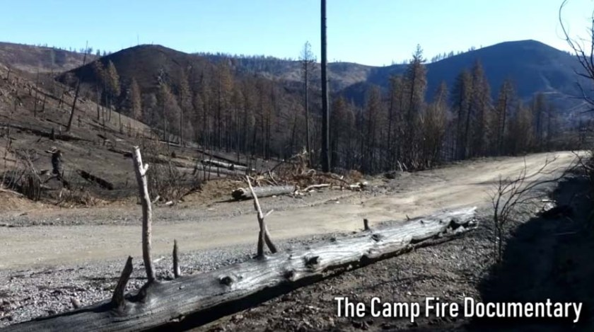 Camp Fire Documentary