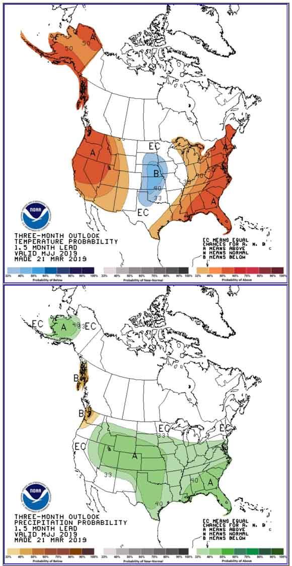 Temperature and precipitation outlook