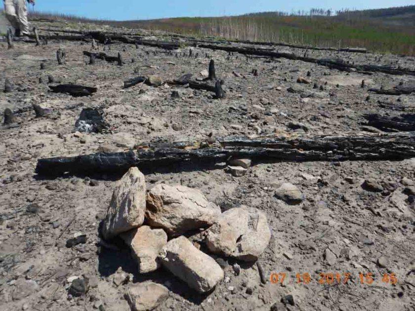 yellowstone fires reburn