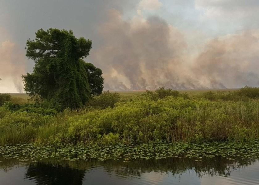 Sawgrass Fire everglades Florida