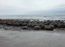 Bowling Ball Beach