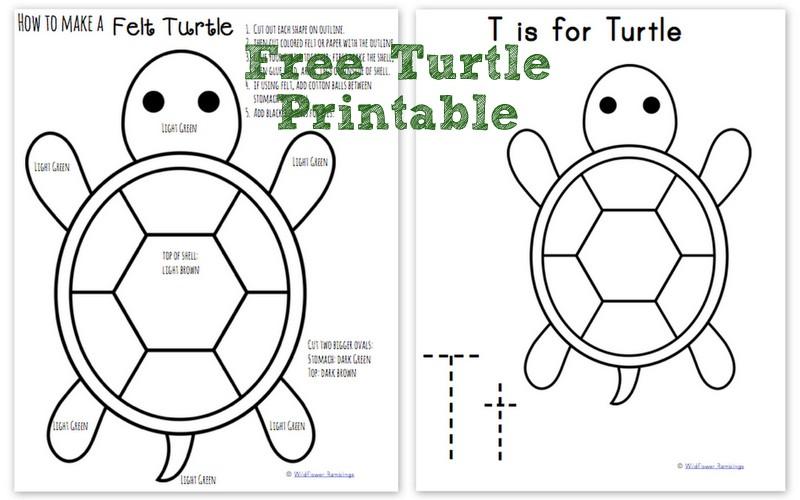 How to make a Felt Turtle {ABC Animals in Felt