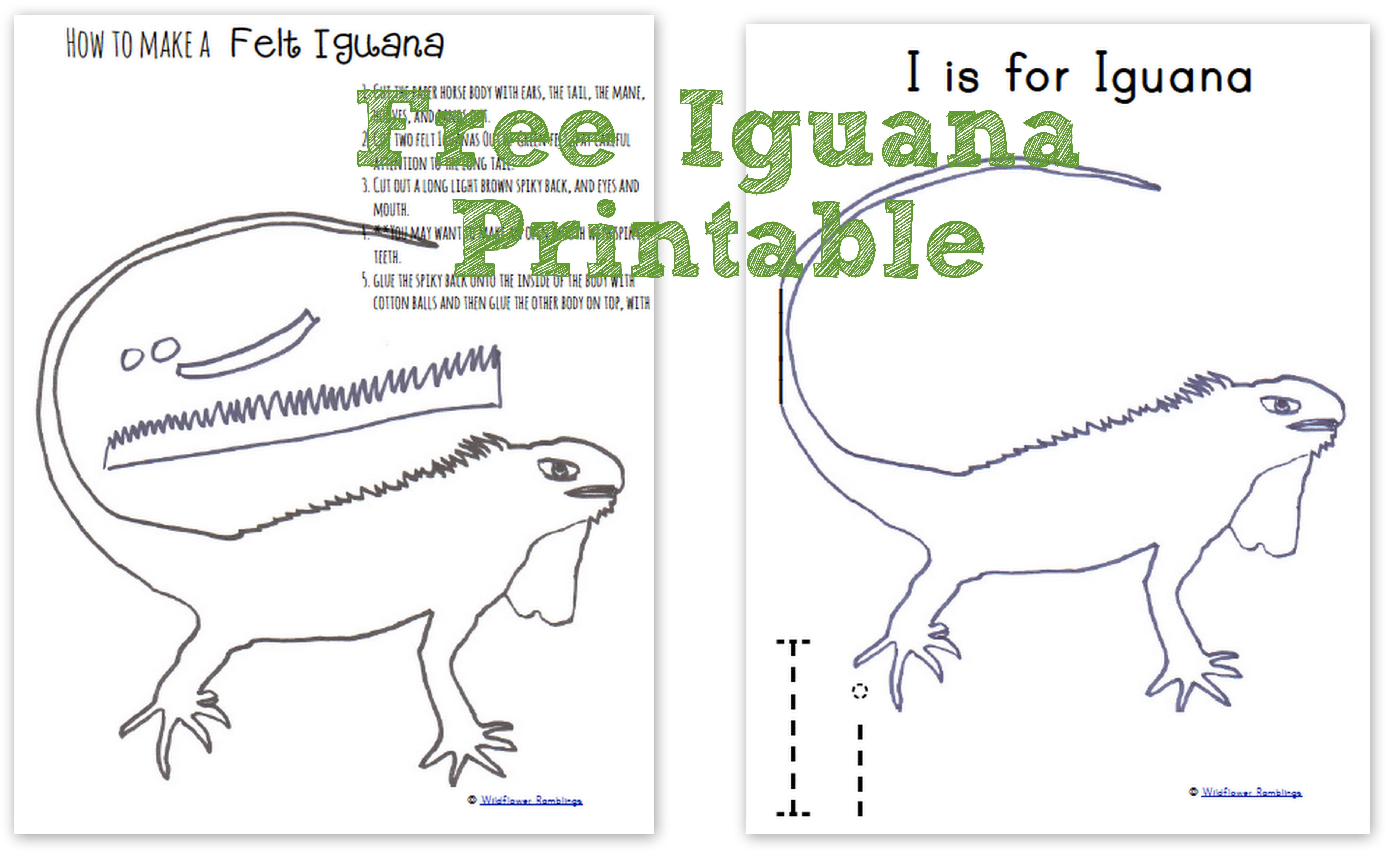 How To Make A Felt Iguana