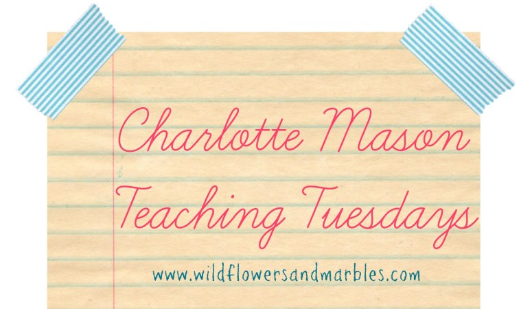 Charlotte Mason Teaching Tuesdays: The Fine Art of Education