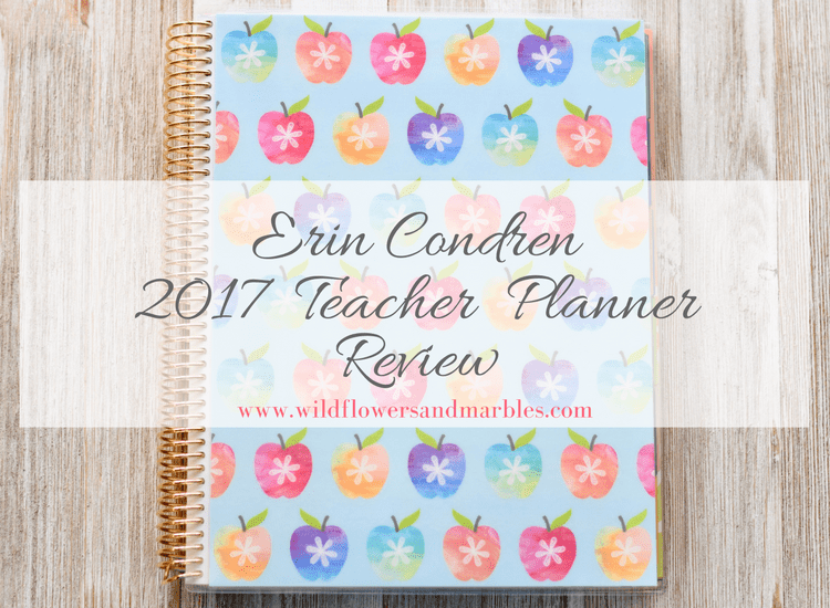 Review: Erin Condren 2017 Teacher Lesson Planner