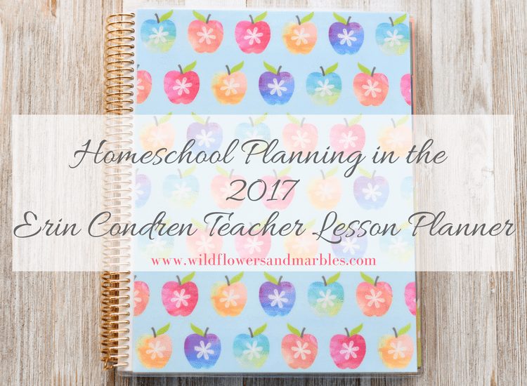 Erin Condren Teacher Planner as Homeschool Planner - Video Walk Through
