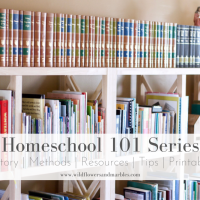 Homeschooling 101 - A Simple Beginning