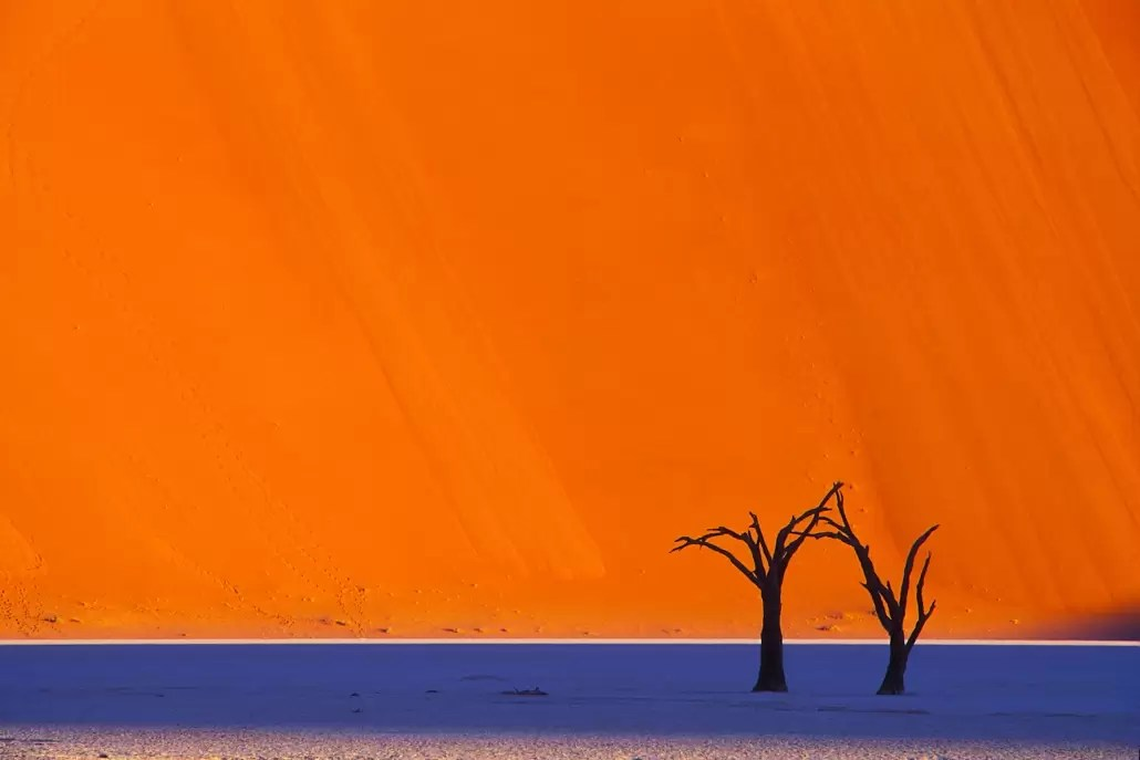 Dead acacia trees in Dead Vlei