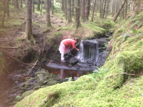 Drink of fresh mountain water (2)