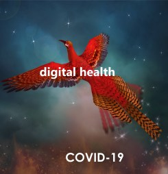 ADHA's Bettina McMahon on COVID's digital health revolution