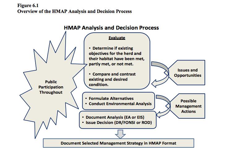 HMAP_process