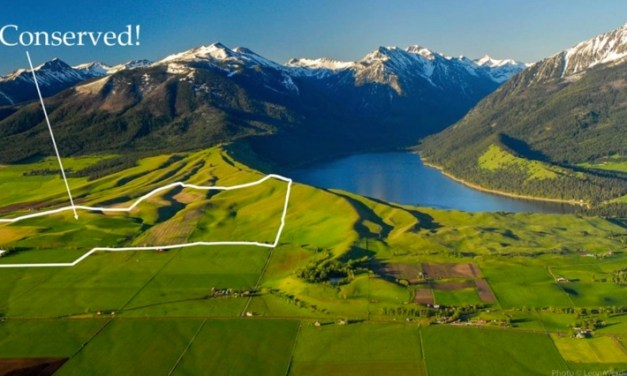 482 Acres of Wallowa Lake's East Moraine Conserved