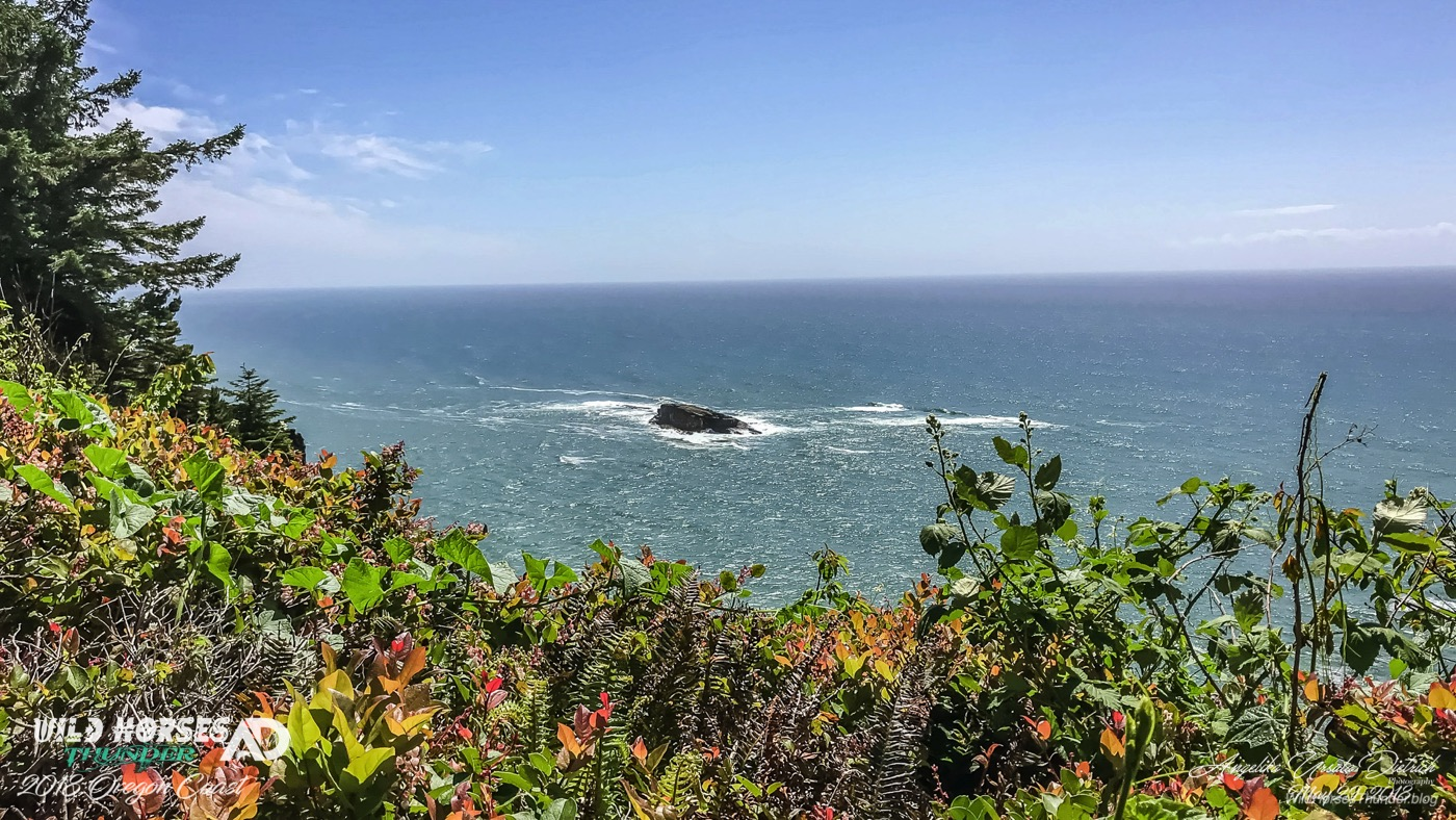 VIDEO: Relax at the Oregon Coast