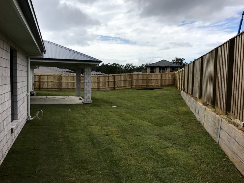 turf sunshine coast, where to buy turf, turf north lakes