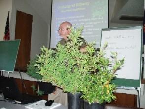 New Development on Domesticating Wild Huckleberries
