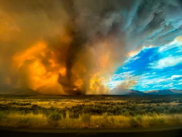 The growing prevalence of extreme weather