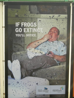 frog awareness poster