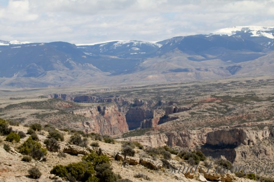Looking towards Bighorn Canyon from Sykes.