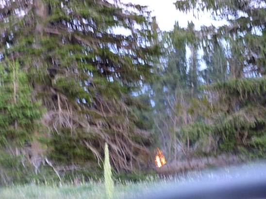Photo of campfire that was burning on July  19, 2013.  Photo by Anh.